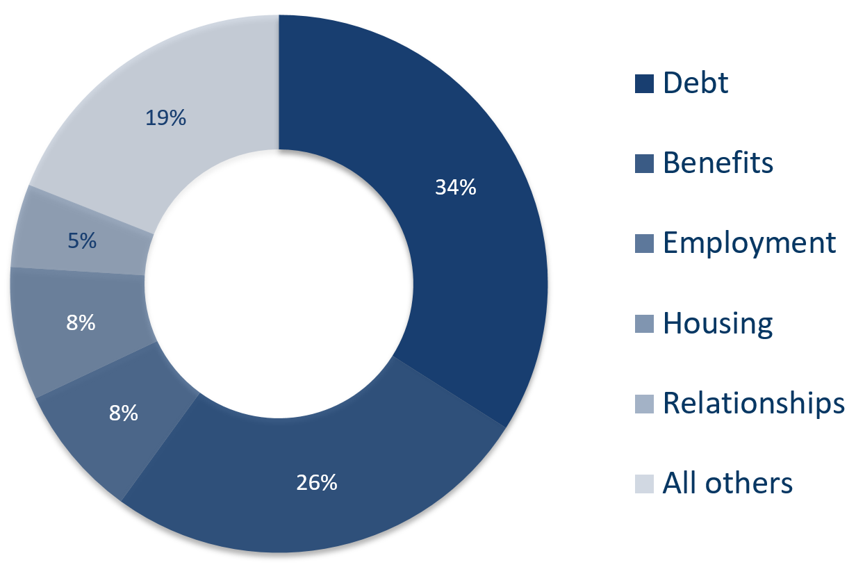 Pie chart of top 5 areas; Debt, Benefits, Employment, Housing & Relationships